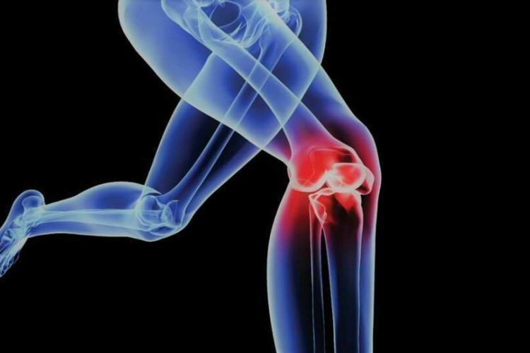articolazione-ginocchio-news-aipt