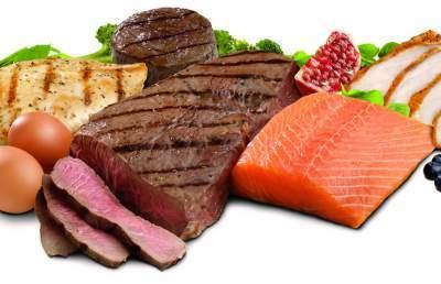 fabbisogno proteico